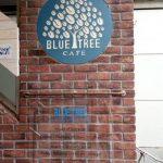 食評☆4 Bluetree Tokyo ランチコース1800円 | おしゃれで落ち着いた渋谷のお店で手頃なランチコースで満腹